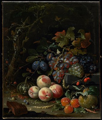 Dutch still life with fruit, foliage, and insects.