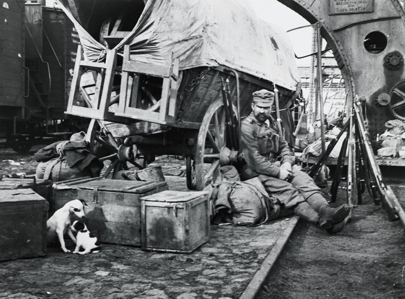 soldier at right, seated next to stacked rifles; boxes and bags on ground behind a wagon with a cover; dog and puppy in lower left corner