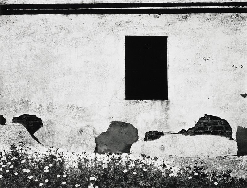 white wall with black window(?); chipped and broken adobe, exposed brick below window; low flowers in foreground