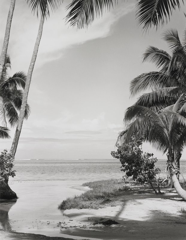 palm trees in foreground on either side of inlet with beach grass and bushes below; reef far distant