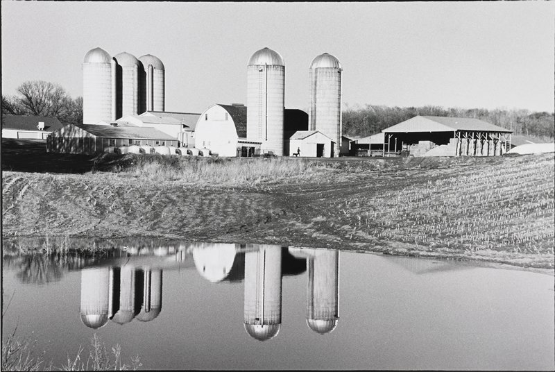 farm buildings, barn, five silos, hay storage; figure with dog in front of shed; pond in foreground reflects silos and barn