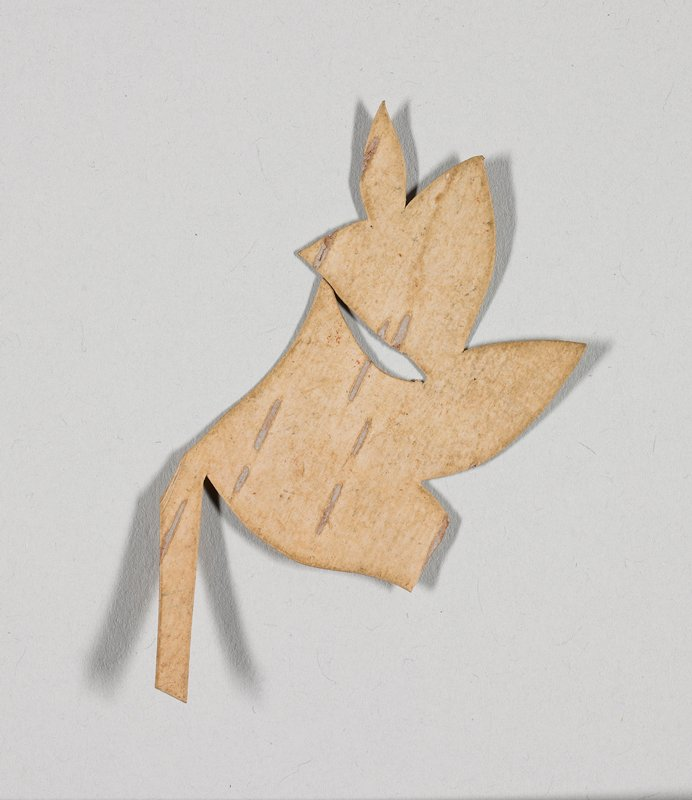 fragment of flower and leaves; light brown on one side, medium brown on opposite side