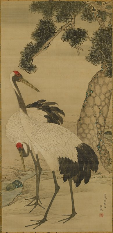 "two white cranes with black tail feathers, grey necks and red ""caps"" standing at the edge of a small stream; pine tree at L"