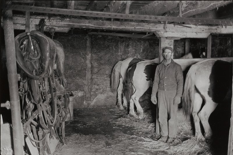 interior of horse barn with the back end of three horses on R with farmer standing next to one; saddles on L
