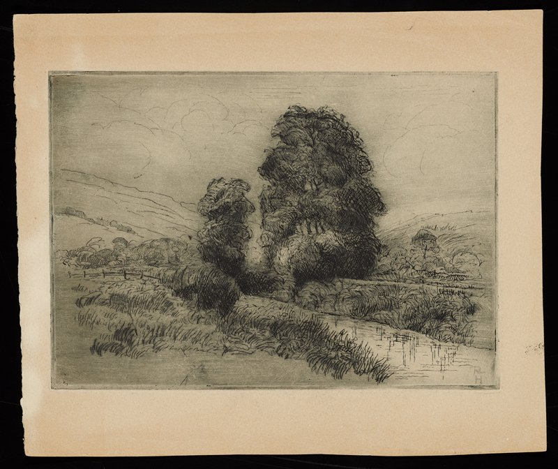 sketchy landscape with stream running diagonally through image; tall trees in center of image; rolling landscape in background