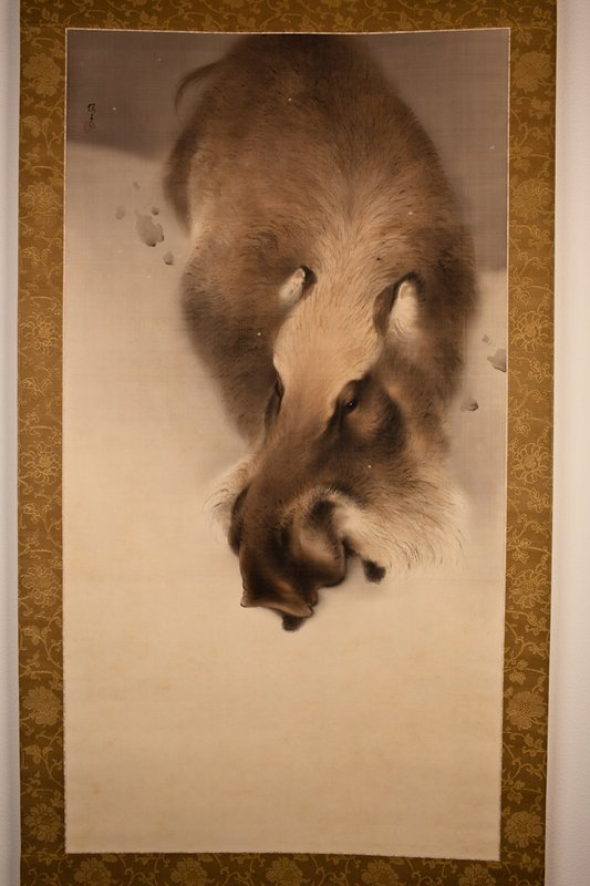 view from above of top of head and back of boar that is in upper portion of painting with blank space at bottom; boar is brown with faint pink on top of head