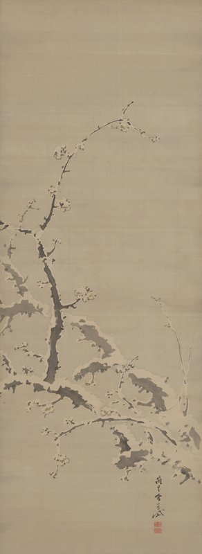 abstracted gnarled branches across lower half with dark vertical twig at L; illusion of snow-covering; white blossoms