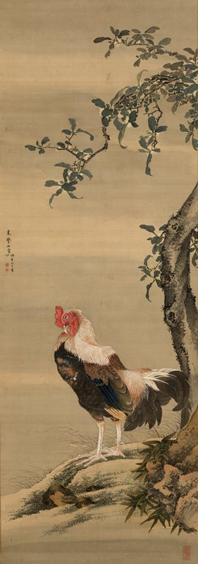 profile of rooster in lower center facing L grooming his chest feathers; standing next to crooked tree with small wrinkled foliage and white flowers