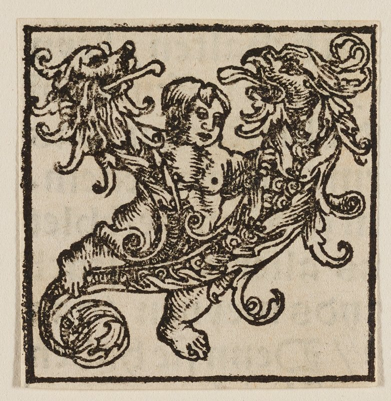 Letter Y: putto straddling arabesque design forming two grotesque heads that face each other