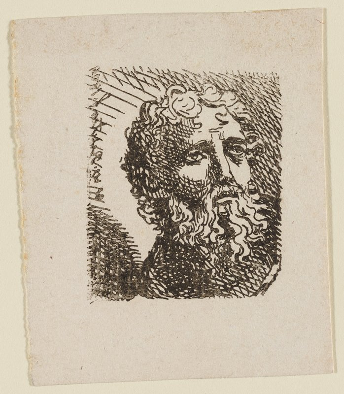 head of bearded man facing out toward R; curly hair and beard; long beard; crosshatched shading in background