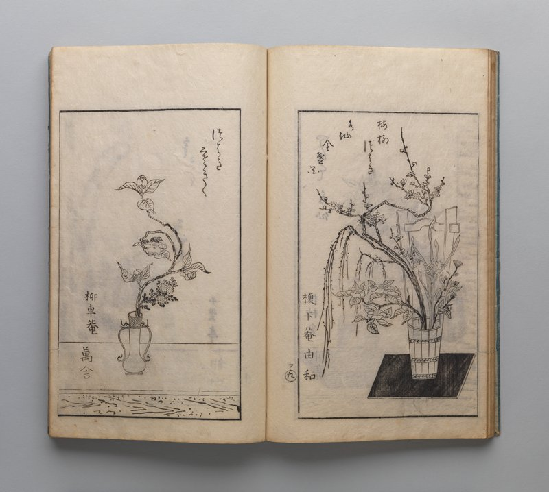 blue cover; inscriptions with images of flowers and plants in vases and hanging containers