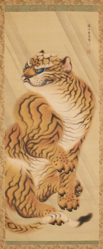 seated tiger with raised front PR paw, partially open mouth, ears back, and blue eyes