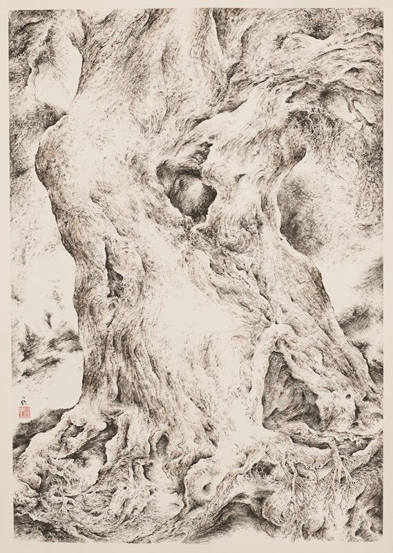 large, gnarled tree trunk with twisted, gnarled roots