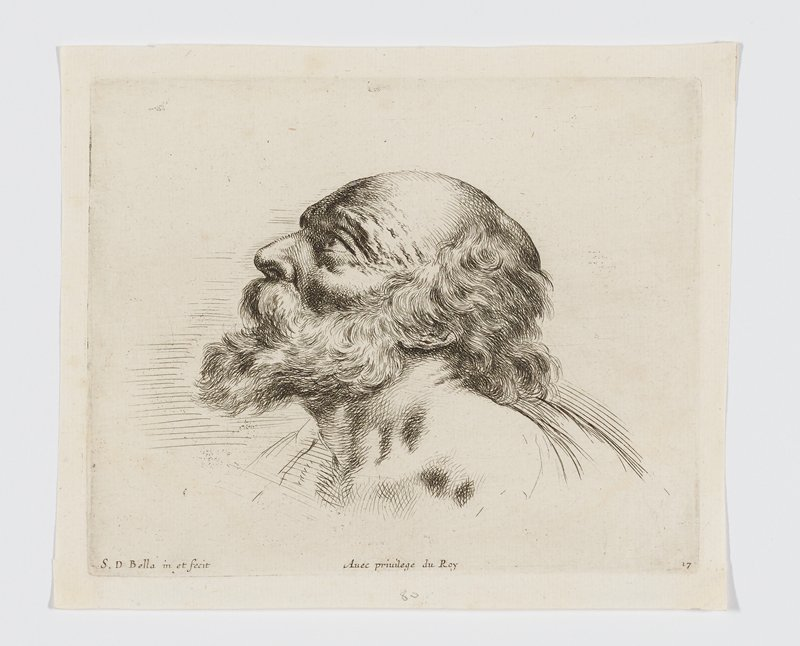 head of an old man with a bushy beard, looking up, in profile from PL