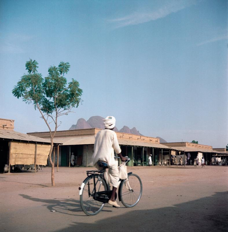 Color photograph of a man riding a bike away from the viewer