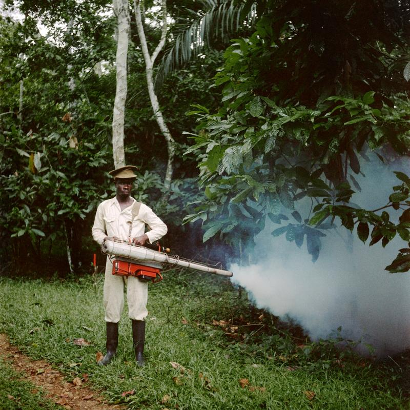 Color image of a man standing at the edge of the forest holding a device that is smoking out of one end