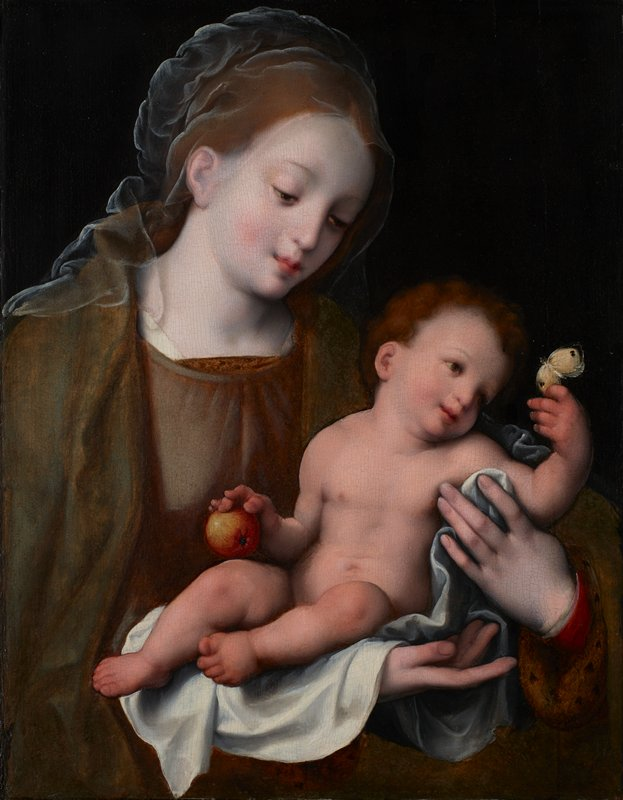 Madonna and Christ Child Christ holds apple in one hand and touches a cabbage butterfly with the other