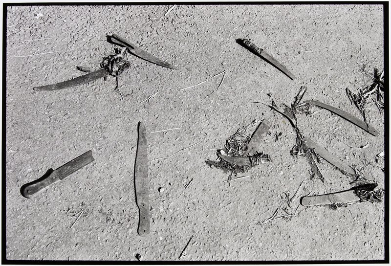 knives scattered on the ground