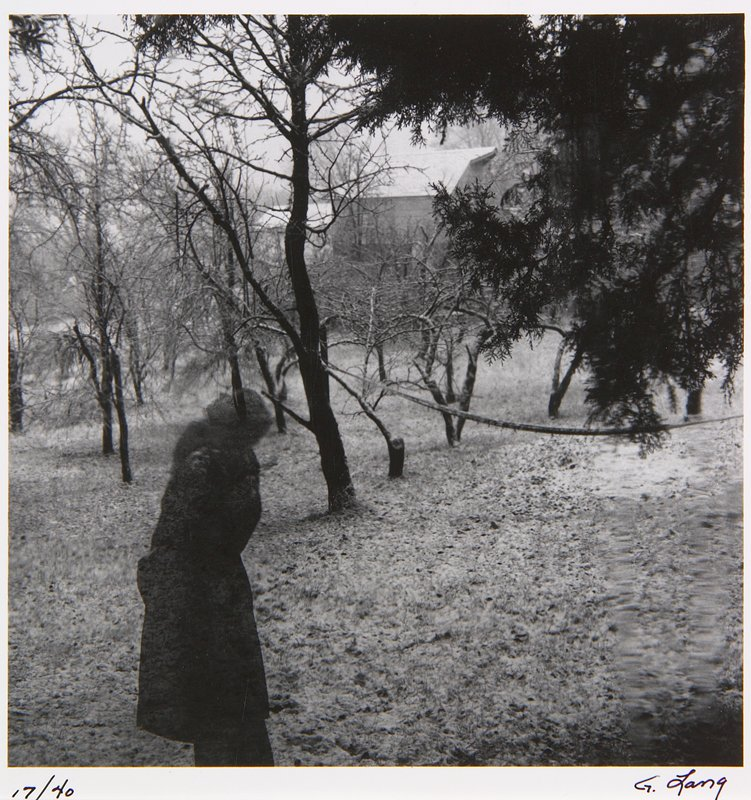transparent image on a person in a coat looking up at trees; barn in background