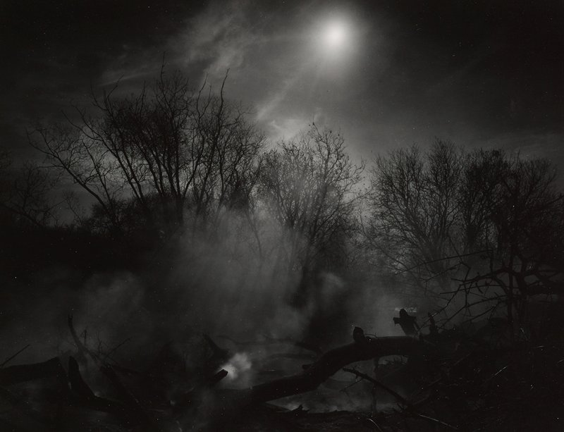 bare trees, fog and moon; fallen logs and branches in foreground