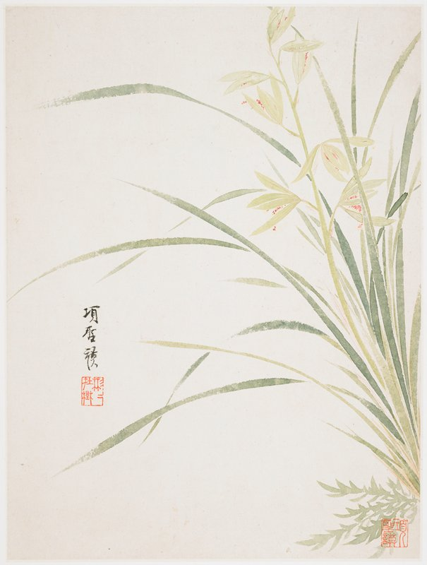 long, slender green leaves at right edge with delicate red flowers encircled by long bud petals; inscription and seal at left, another seal in LRC