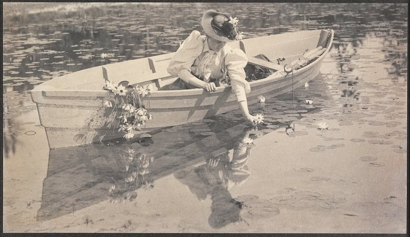 woman wearing a white shirtwaist and a straw hat, seated in a rowboat picking water lilies; bunch of lilies hang over edge of boat
