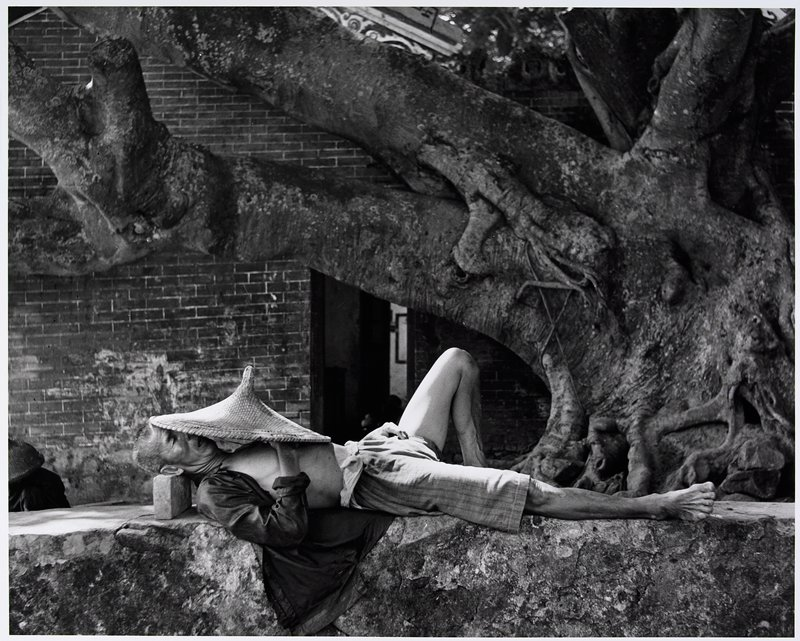 reclining man with his head resting on a brick and a straw hat over his face and chest; large, gnarled tree at R