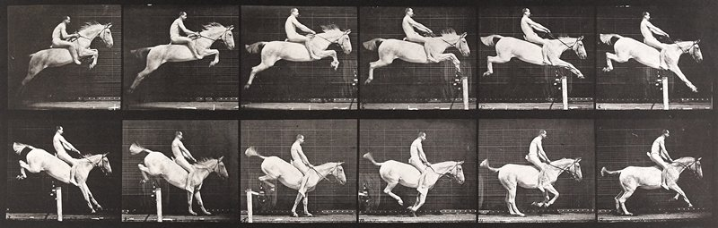 Jumping a hurdle, bareback, clearing and landing, rider nude, gray mare. From a portfolio of 83 collotypes, 1887, by Edweard Muybridge; part of 781 plates published under the auspices of the University of Pennsylvania