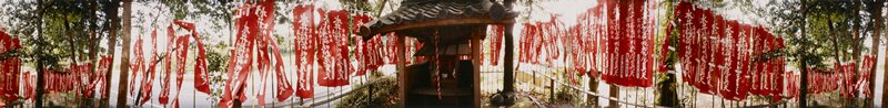 419 degree panoramic color photograph; small tile-roofed shack with shrine inside; red and white banners with Japanese characters to left and right, hanging from thin bamboo poles; road in background beyond trees