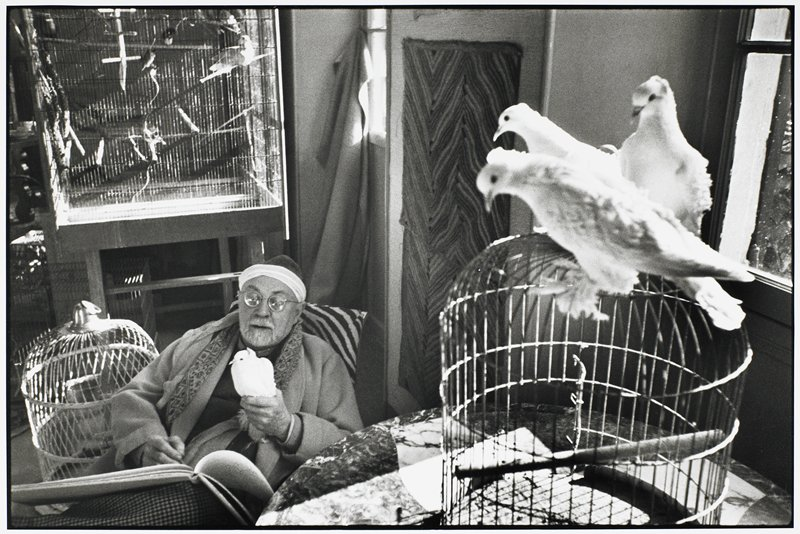 Matisse seated holding a white bird; three additional birds seated on cage at R; artist's sketchbook is open on lap